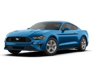 Ford Mustang or Similar